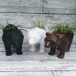 3D Printed Bear Planters for Indoor Gardening