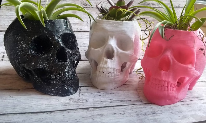 3D Printed Skulls Planter for Indoor Gardening or Stationary image 0