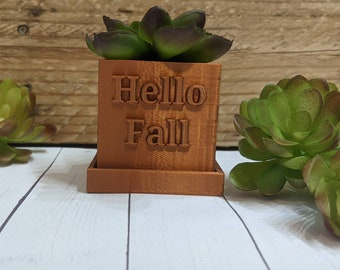 Hello Fall Succulent Planter, for Indoor Gardening