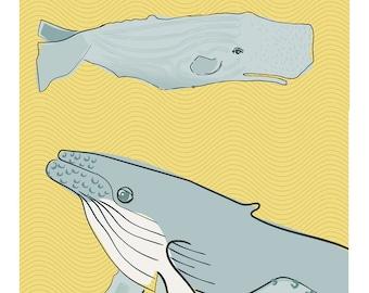 Digital Wall  Colourful Illustration Print 4x10: Whales