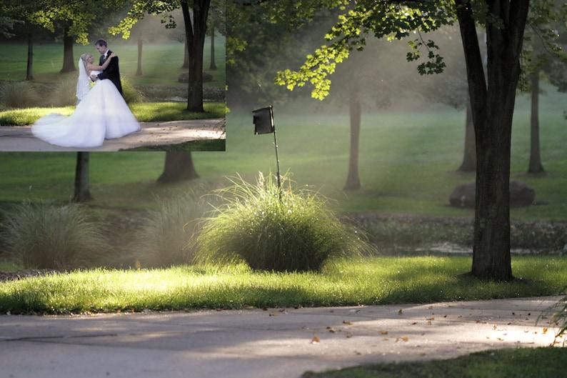 Park digital background wedding background summer digital image 0