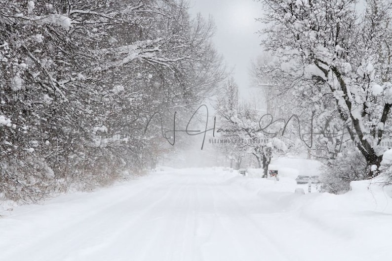 winter backgrounds Christmas Backgrounds snow backdrop winter image 0