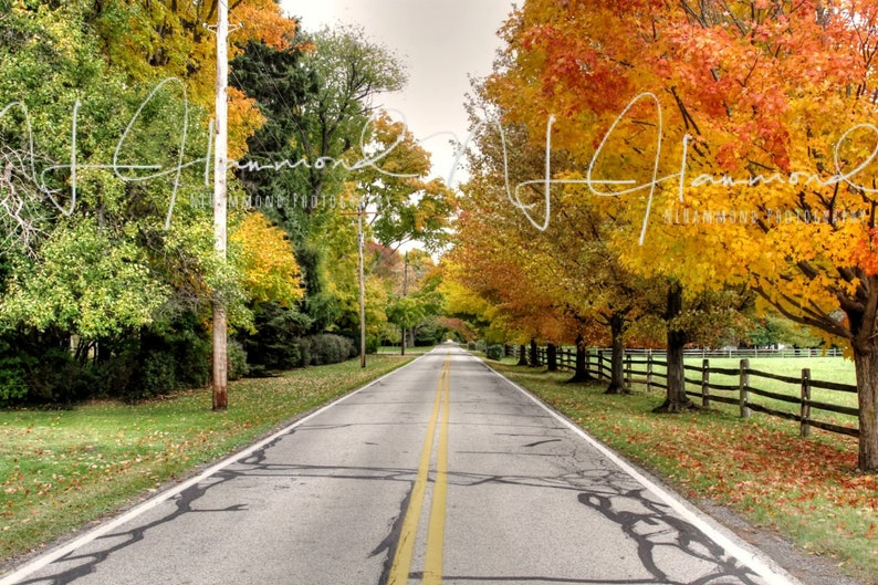 Fall Country Road digital background Fall path background image 0