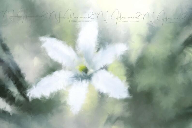 Floral Watercolor painting flower Print Digital Fine Art Print image 0