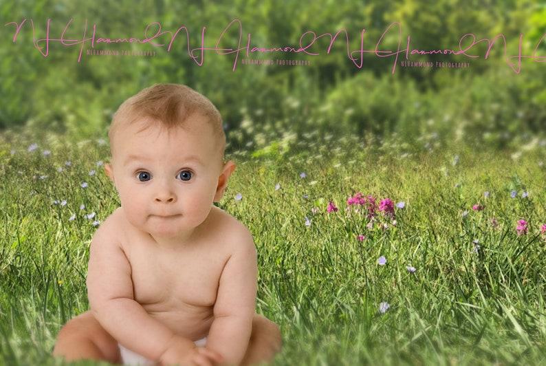 Baby background Flower background field background garden image 0