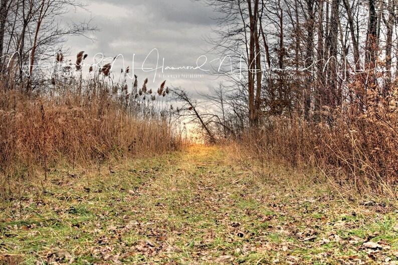 Fall digital backdrop path background wedding background image 0