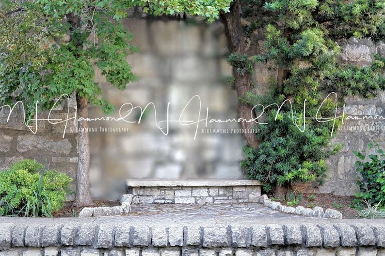 Digital Background with Bench summer background wedding image 0