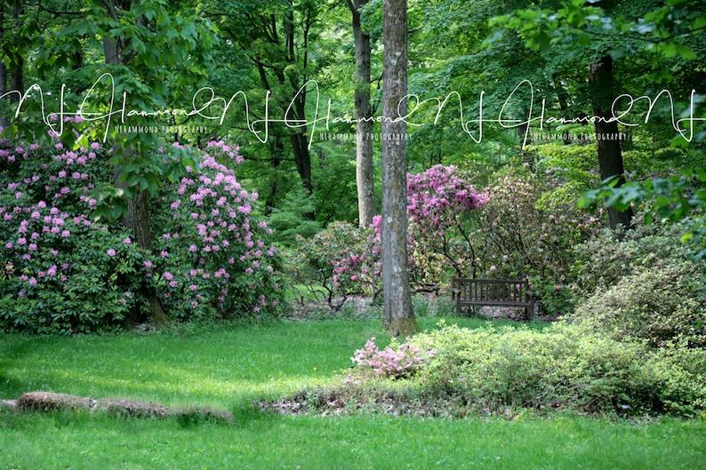 wedding digital background summer backdrop flower backround image 0