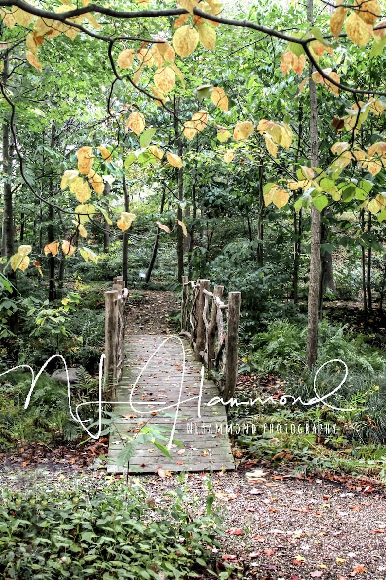 fall digital backdrop with bridge fall background trees fall image 0