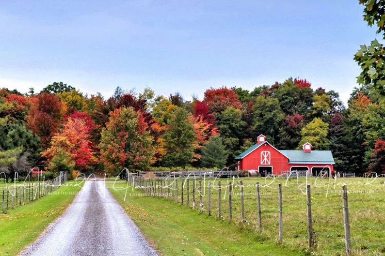 barn digital background with path fall digital backdrop image 0