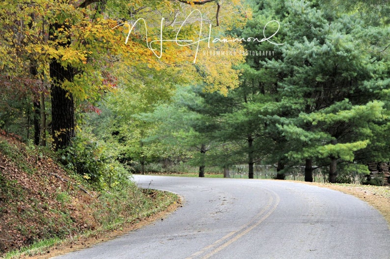 Fall Country Road Digital Background Autumn Backdrop image 0