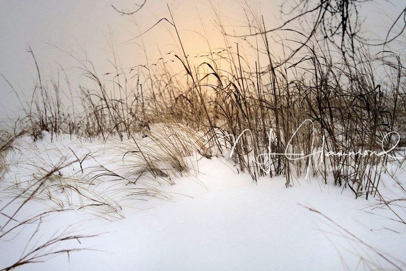 Snowy newborn digital background Christmas digital background image 0