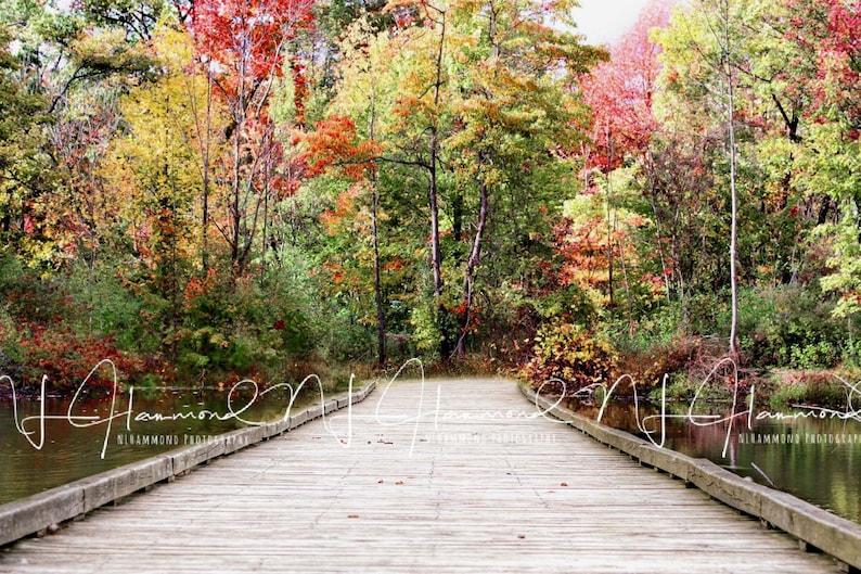 Fall digital backdrop fall background path backgournd path image 0