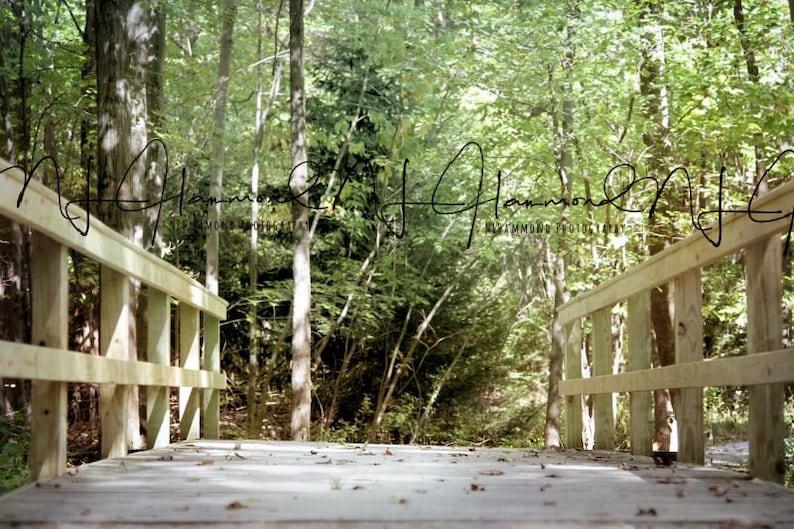 summer digital background summer backdrop bridge digital image 0