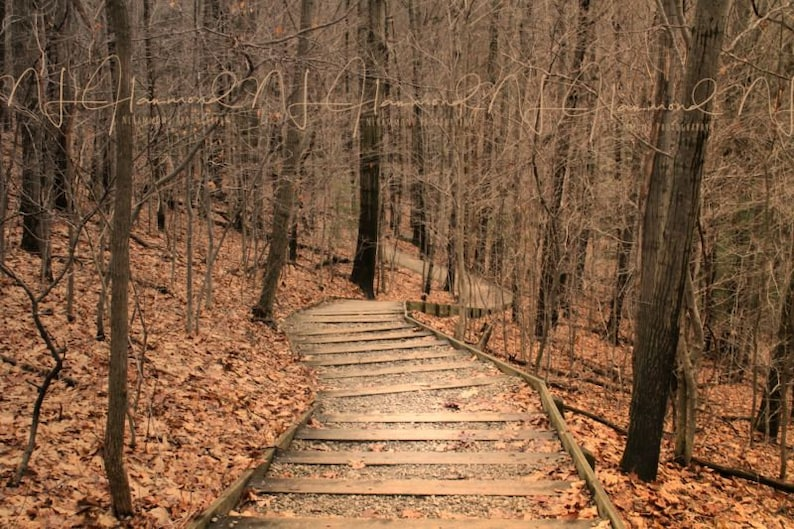 fall background digital with steps fall backdrop stairs image 0