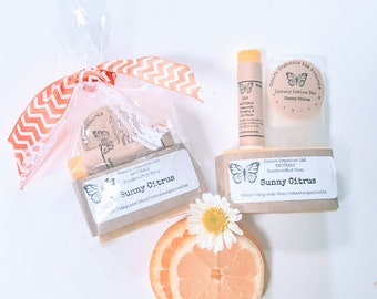 citrus spa gift set citrus citrus soap gift set organic spa gift set organic citrus spa bridal shower gift womens spa gift gift