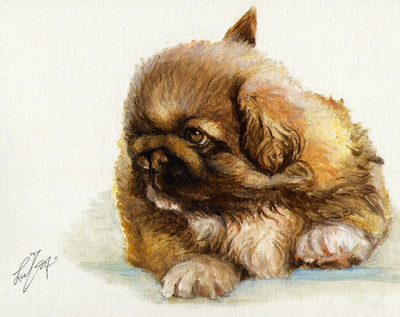 Original Oil DOG Portrait Painting PEKINGESE PUPPY Art from Artist