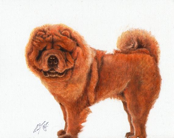Original Oil Art CHOW CHOW Portrait