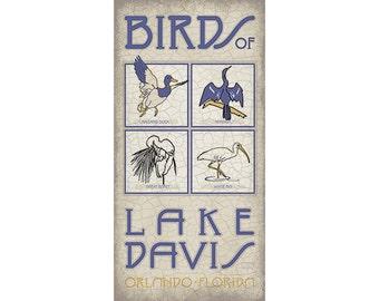 Lake Davis Birds
