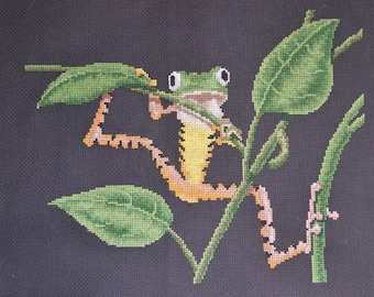Tree Frog - FINISHED Counted Cross Stitch