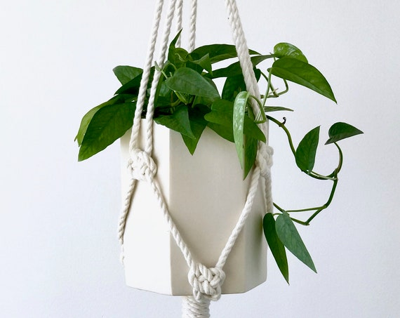 Jules Hanging Planter, Ceramic Planter with Macrame Hanger