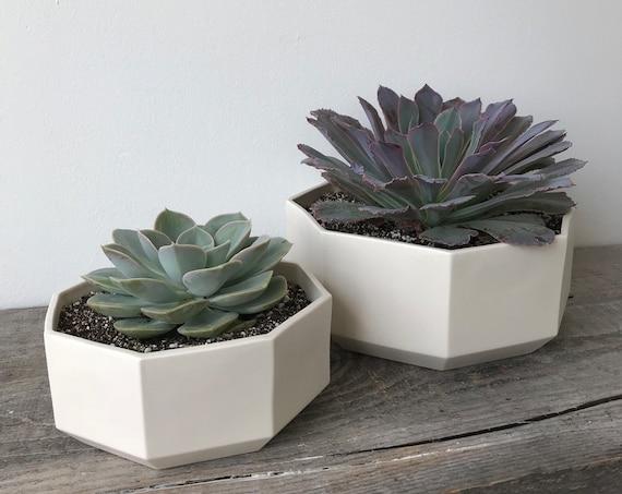 Octagon Succulent Planter, Ceramic Porcelain Modern Tabletop Planter, Small or Large, or Set
