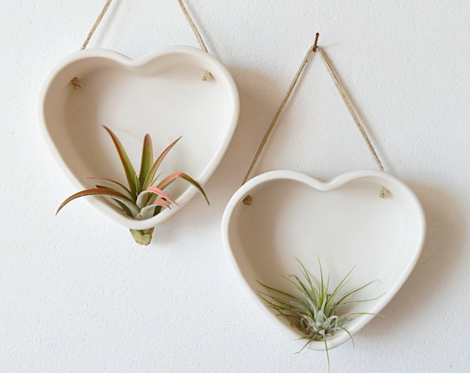 Heart Air Plant Hanger, Heart Shaped Air Plant Holder, Valentine's Gift, Wall Air Plant Holder