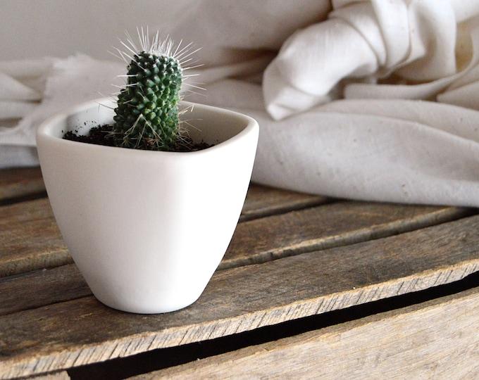 Modern Square Ceramic Succulent & Cactus Planter Pot, Small white planter no drainage, Minimalist decor, gift