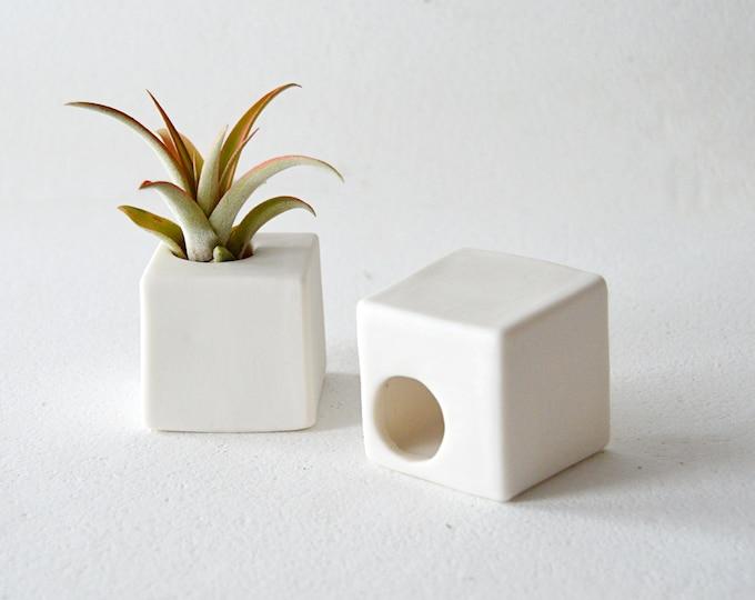 Modern Square Air Plan Holder, Small White Ceramic Air Plant Holder