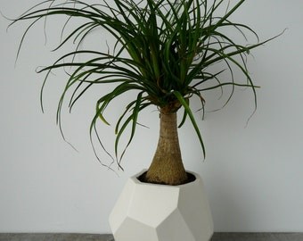 On Sale, Geo-Planter, Geometric Faceted Planter, Ceramic, Modern Porcelain Crystal Design