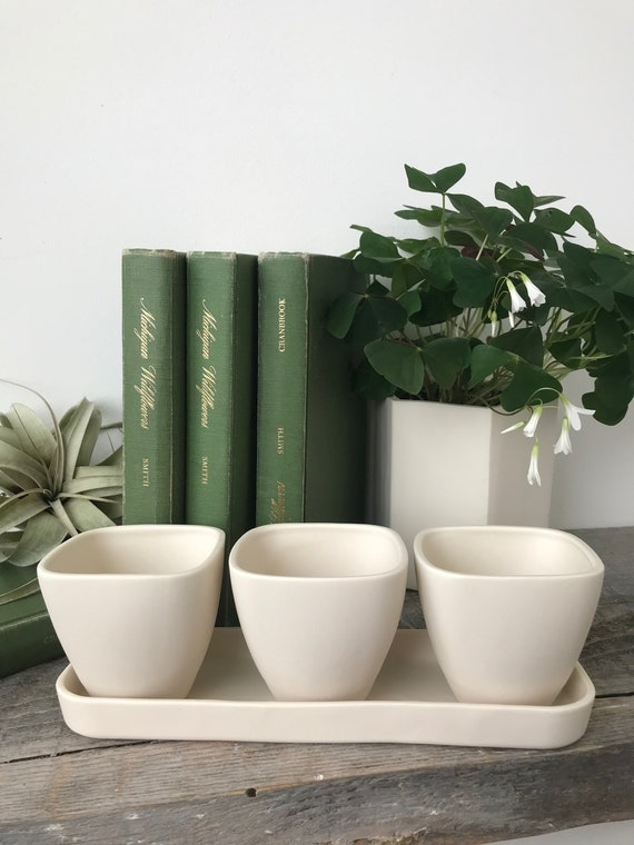 Succulent Planter Trio with Tray