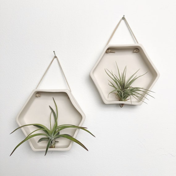 Porcelain Hexagon Air Plant Holder, Wall Hanging Planter