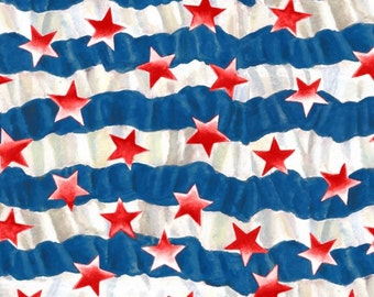 Blank Quilting - USA - All the Way - Stars and Stripes