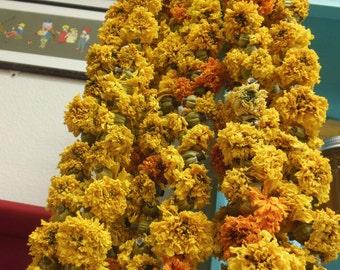Marigold Garlands. Farm grown marigold flower garlands, cempasuchil. altar, special event.