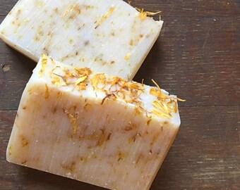 Roasted Chestnut Soap
