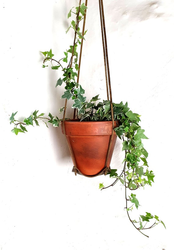 Leather plant hanger, indoor plant hanger
