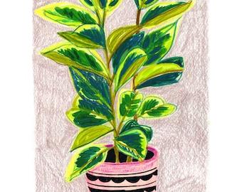 Green Plant Print, Plant Kitchen Decor, Crazy Plant Lady, House Plant Art, Gifts for Plant Lovers, Botanical Print, Housewarming Art,