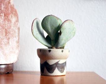 Mini Stoneware Tapered Pot With Bird Shaped Pattern - boho, stoneware, ceramic, succulent pot, home decor, plants