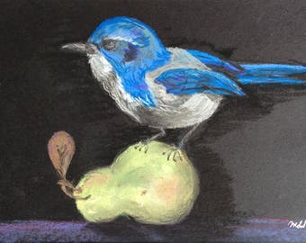 """Signed Print of """"Jay on a Pear"""""""