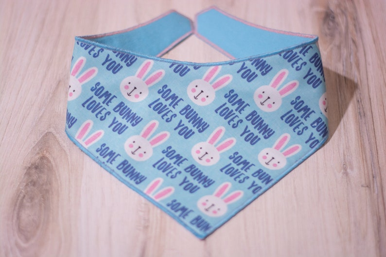 Some Bunny Loves You Easter Dog Bandana Adjustable 3 Snap image 0