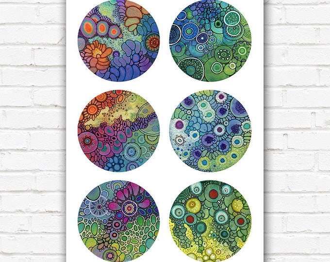 PRINT - Mini Petri Collection 1 - 11x17 Print