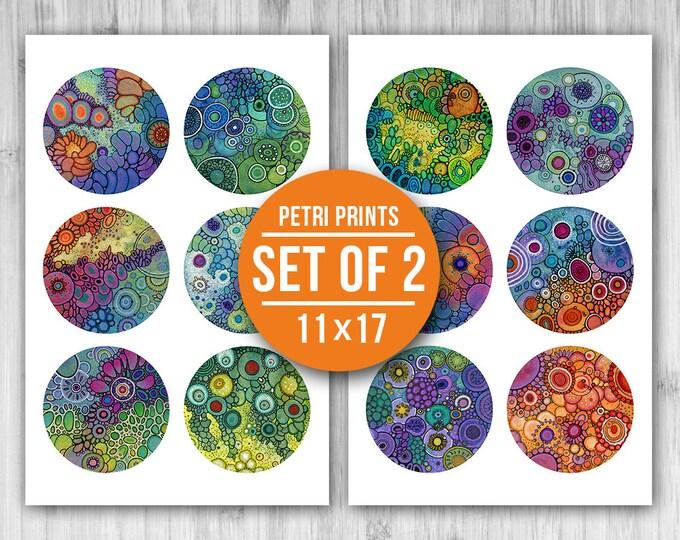 PETRI PRINTS: Set of Two 11x17 Prints