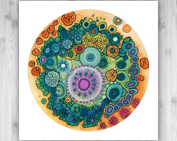 GICLEE PRINT  - Phoenix - 12x12 - Circle - DoodlePainting - Select Your Size