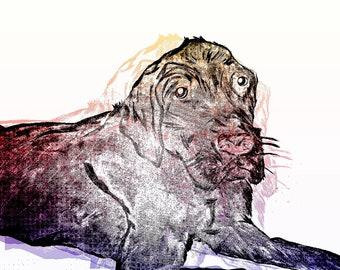 "Mixed Media Canvas Print Lab Dog - 14"" x 11"" - Hand Drawn, Painted, Illustrated Mixed Media Art by Jillian Burrow Pop Art Effect"