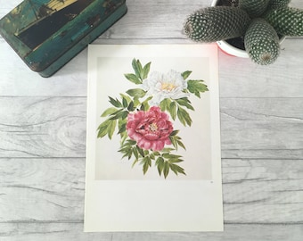 Vintage flower painting peonies print, peony print, mothers day, new mother mother's day expecting mother nature art plant picture plant mom