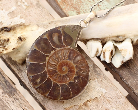 XL AMMONITE NECKLACE - Sterling Silver - Fossil - Fractal - Crystal Necklace - Archaeology - Sacred Geometry - Shell - Handmade