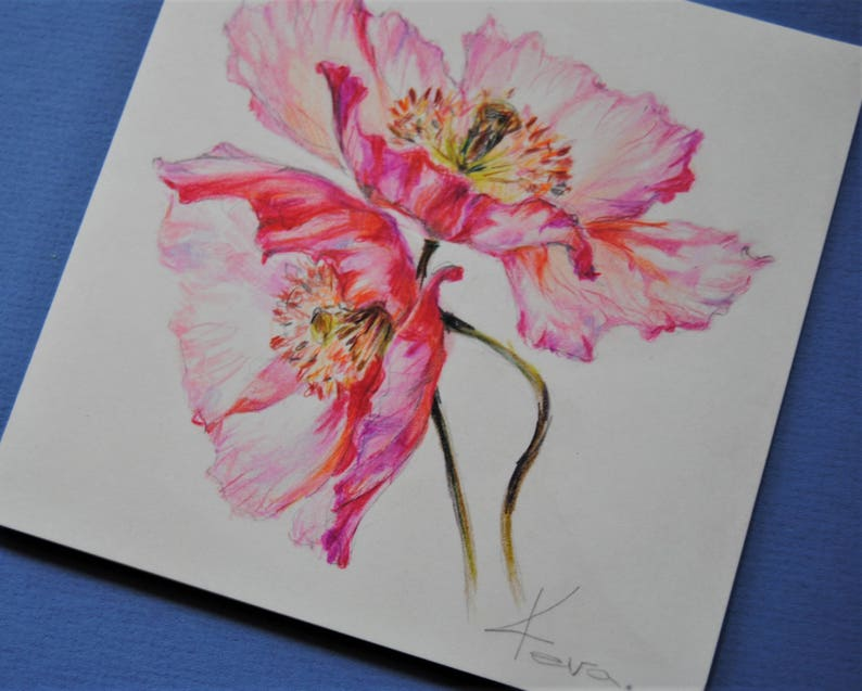 Red Poppies Hand Drawing Card Flowers Card Colored pencil Greeting Card