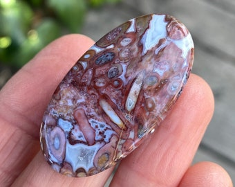 Agatized Fossilized 32 Cts Approx 30x23x4 MM.Approx Indonesian Red Petrified Palm Wood Cabochon Petrified Palm Root Cabochon