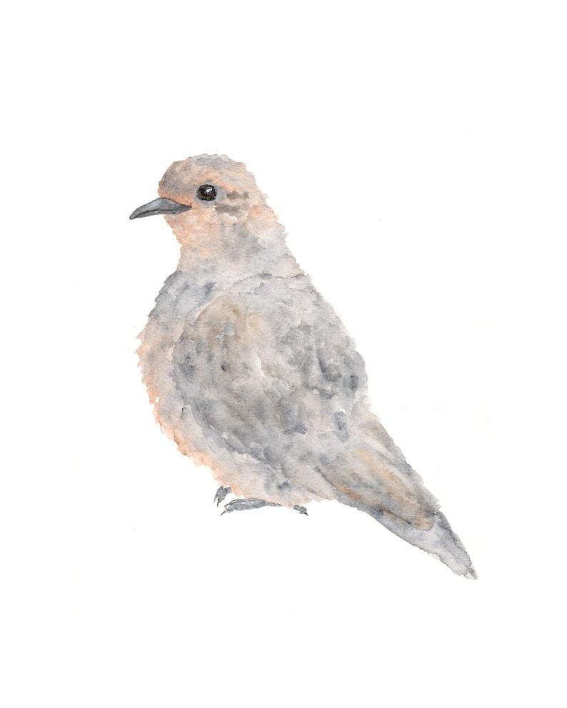 bird art bird painting watercolor painting grey dove etsy rh etsy com