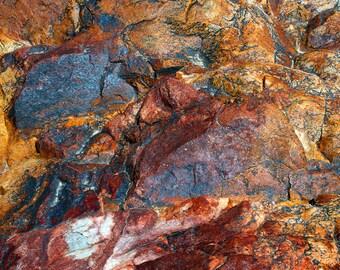 Glacial Rock Art II, Wasatch Mountains, Utah